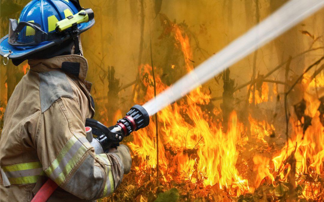 Binance dona $ 1 millón en criptomonedas para el alivio del incendio forestal de Australia