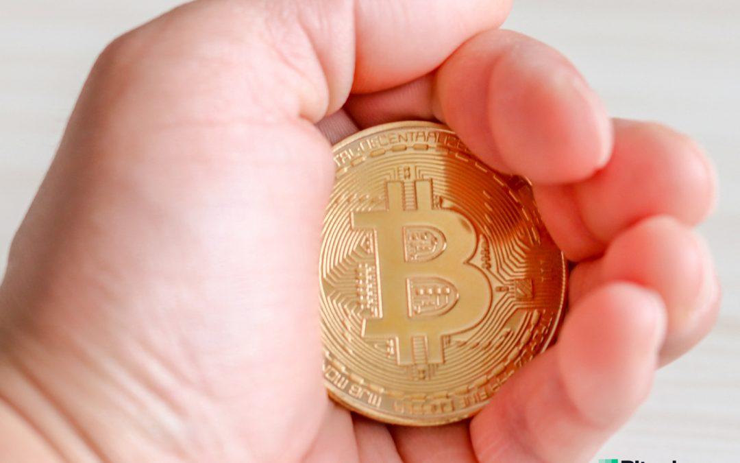 El gráfico de ondas de HODL revela el firme agarre de los titulares de Bitcoin: el 42% no se ha movido en 2 años