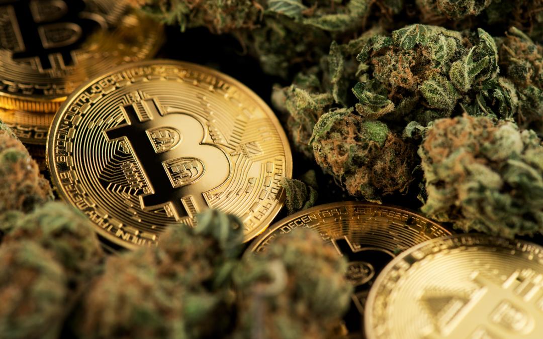 Relm lanza cobertura de seguro para criptomonedas y grupos de cannabis en un clima regulatorio difícil