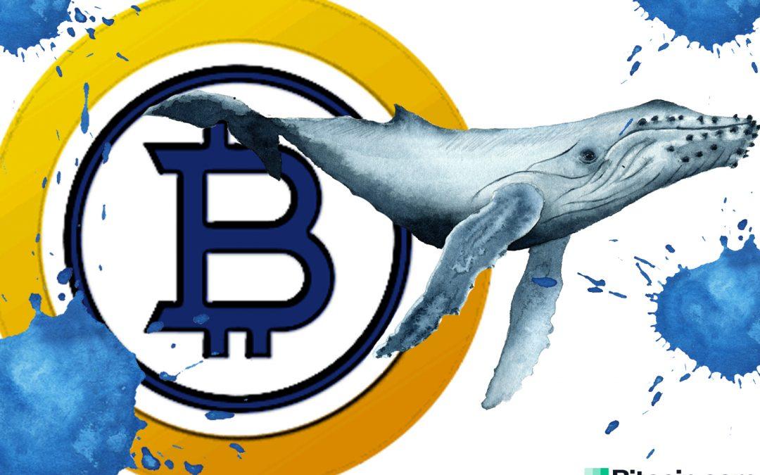 Bitcoin Gold Whale supuestamente controla la mitad del suministro de BTG