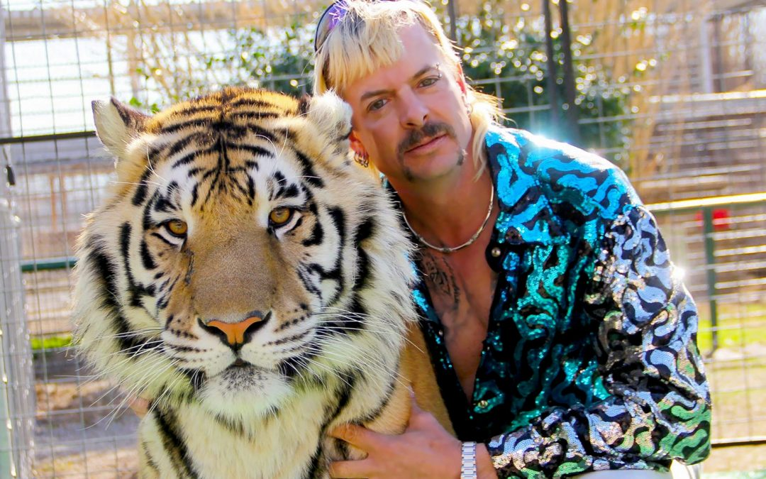 Tiger King's Archnemesis Big Cat Rescue acepta Bitcoin