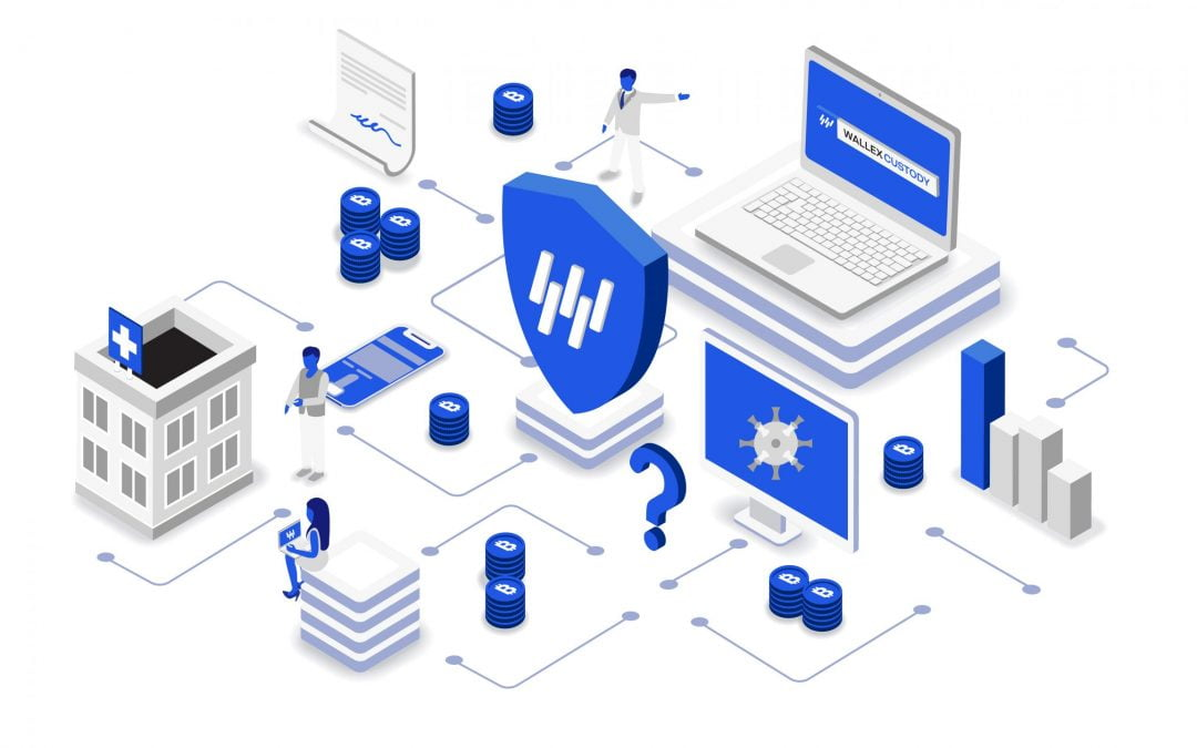 Presentamos Wallex Custody, el custodio de la nueva era digital