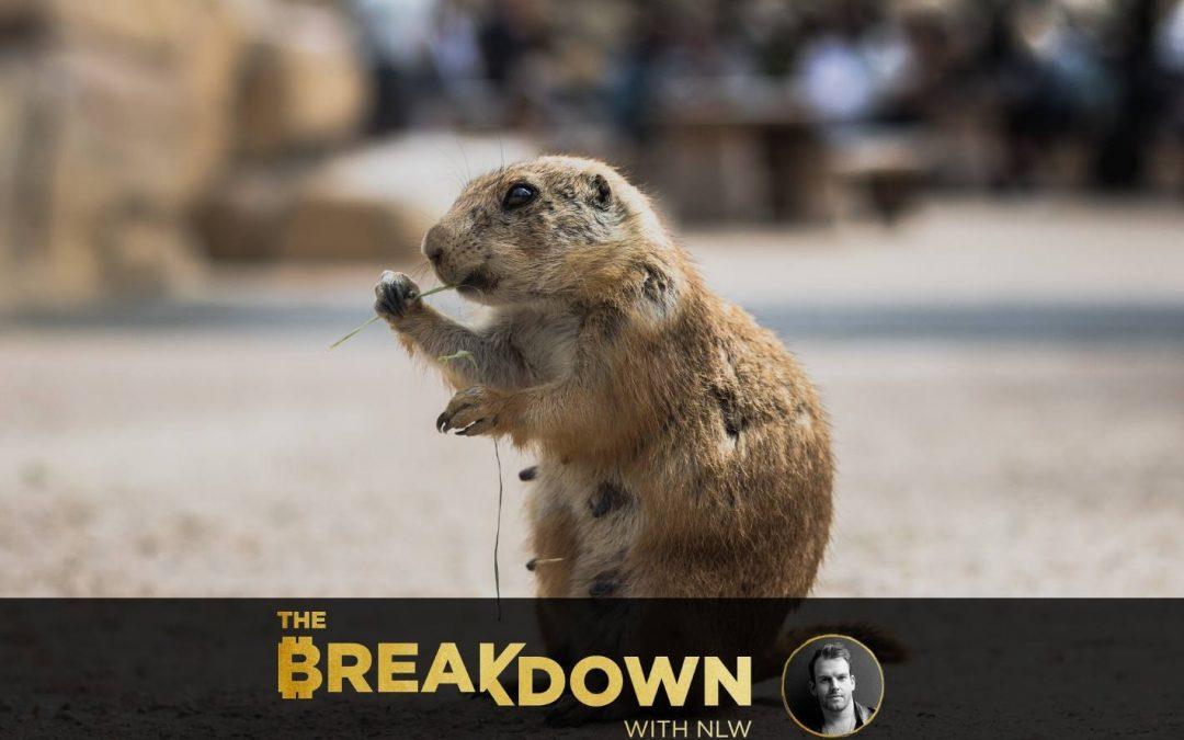 Bienvenido a la economía del día de la marmota (PS, apesta)