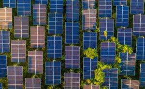 Prueba de energía Blockchain P2P de Power Ledger 'técnicamente factible', dice en nuevo informe