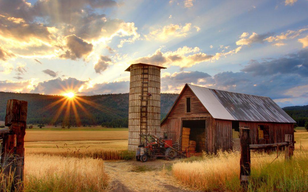 ¿Qué es la producción agrícola? El combustible del cohete de DeFi, explicado